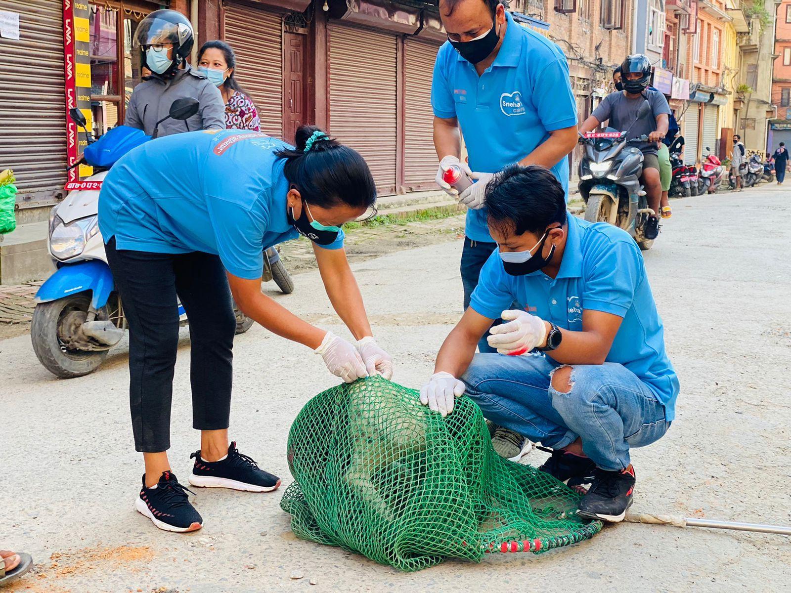 Sneha's Care Starts 'Anti-Rabies Vaccination' program in LMC