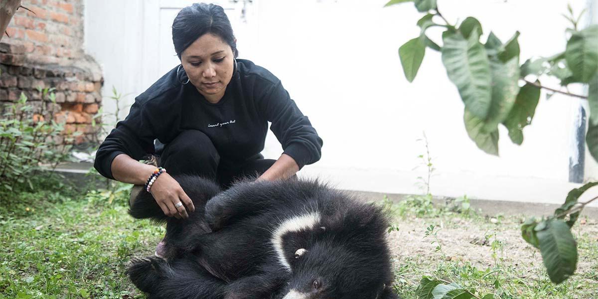 Captive Animal Welfare Program